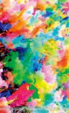 colourfull festival holi
