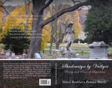 Shadowstyx by Valkyri, Poetry and Prose of Depression