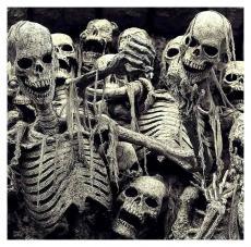 Skeletonized