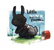 Little Black Bunny