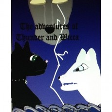 the adventures of thunder and wicca
