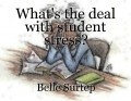 What's the deal with student stress?