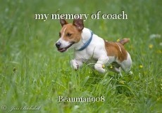 my memory of coach