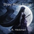 Stray Moon Rising