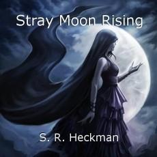 Stray Moon Rising