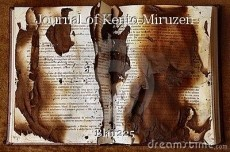 Journal of Kento Miruzen