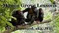 Mango Grove Lessons