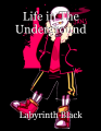 Life in The Underground