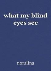 what my blind eyes see