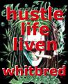 hustle life liven