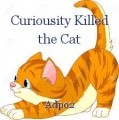 Curiousity Killed the Cat