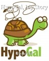 HypoGal, My Story
