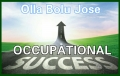 occupational success