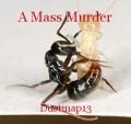 A Mass Murder