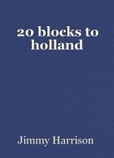 20 blocks to holland