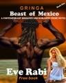 GRINGA: The Beast of Mexico