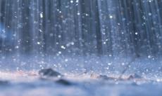 Love Poems In The Rain