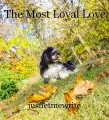The Most Loyal Love