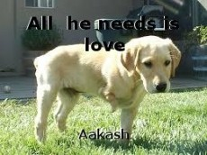 All  he needs is love