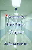 A Domestic Incident - Chapter Three