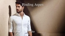 Finding Aspen