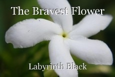 The Bravest Flower