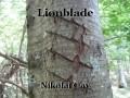 Lionblade