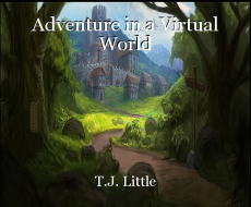 Adventure in a Virtual World