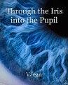 Through the Iris into the Pupil