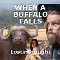 WHEN A BUFFALO FALLS