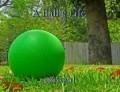 A Ball's Life