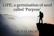 LIFE; a germination of seed called 'Purpose'