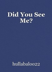 Did You See Me?