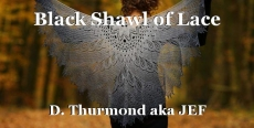 Black Shawl of Lace