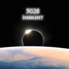 5028: Insight