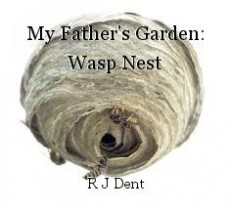 My Father's Garden: Wasp Nest