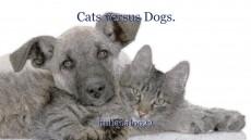 Cats versus Dogs.
