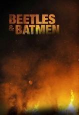 beetles and batmen