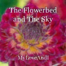 The Flowerbed and The Sky