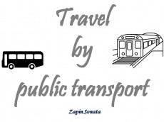 Why do I travel by public transport?