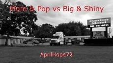 Mom & Pop vs Big & Shiny