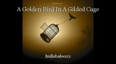 A Golden Bird In A Gilded Cage