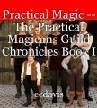 Practical Magic -- The Practical Magicans Guild Chronicles Book I