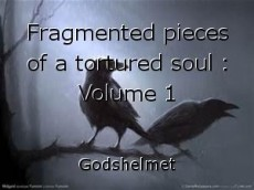 Fragmented pieces of a tortured soul : Volume 1