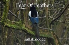 Fear Of Feathers