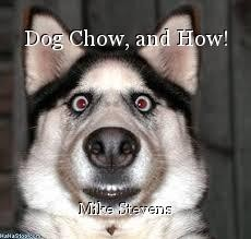 Dog Chow, and How!