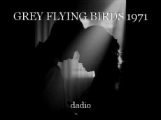 GREY FLYING BIRDS 1971