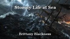 Stormy Life at Sea