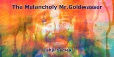 The Melancholy Mr.Goldwasser