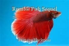 Rumble Fish Sequel